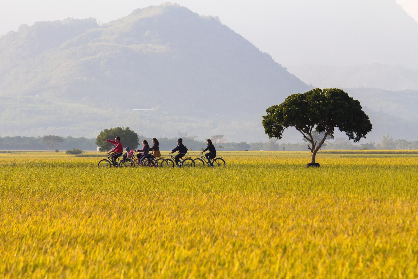 8-Hour Chartered Day Tour to Taitung