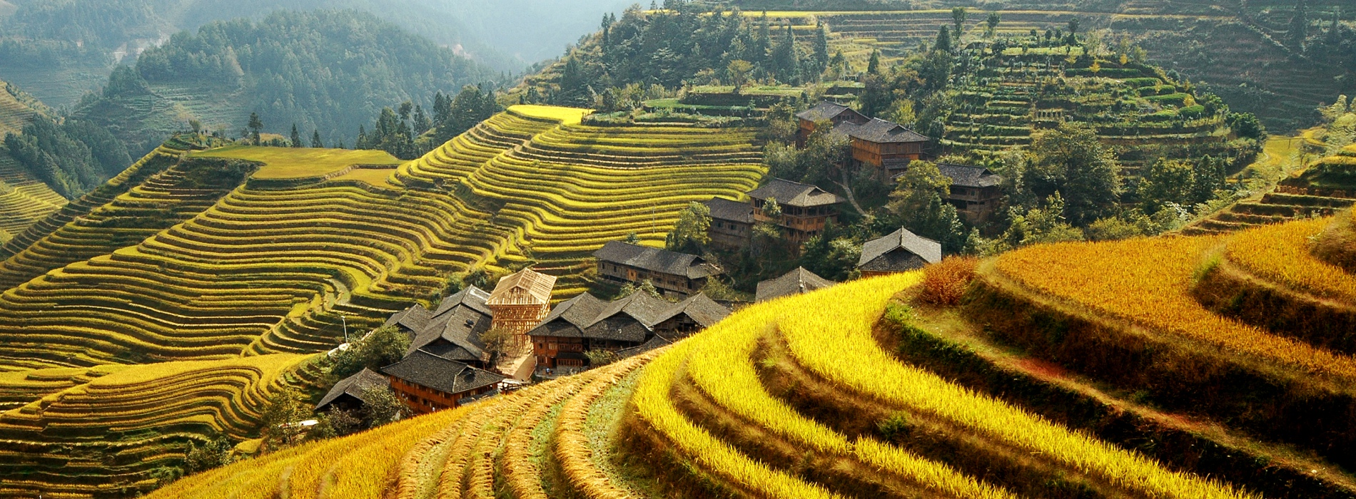 One day group tour of Guilin Longji terraced fields