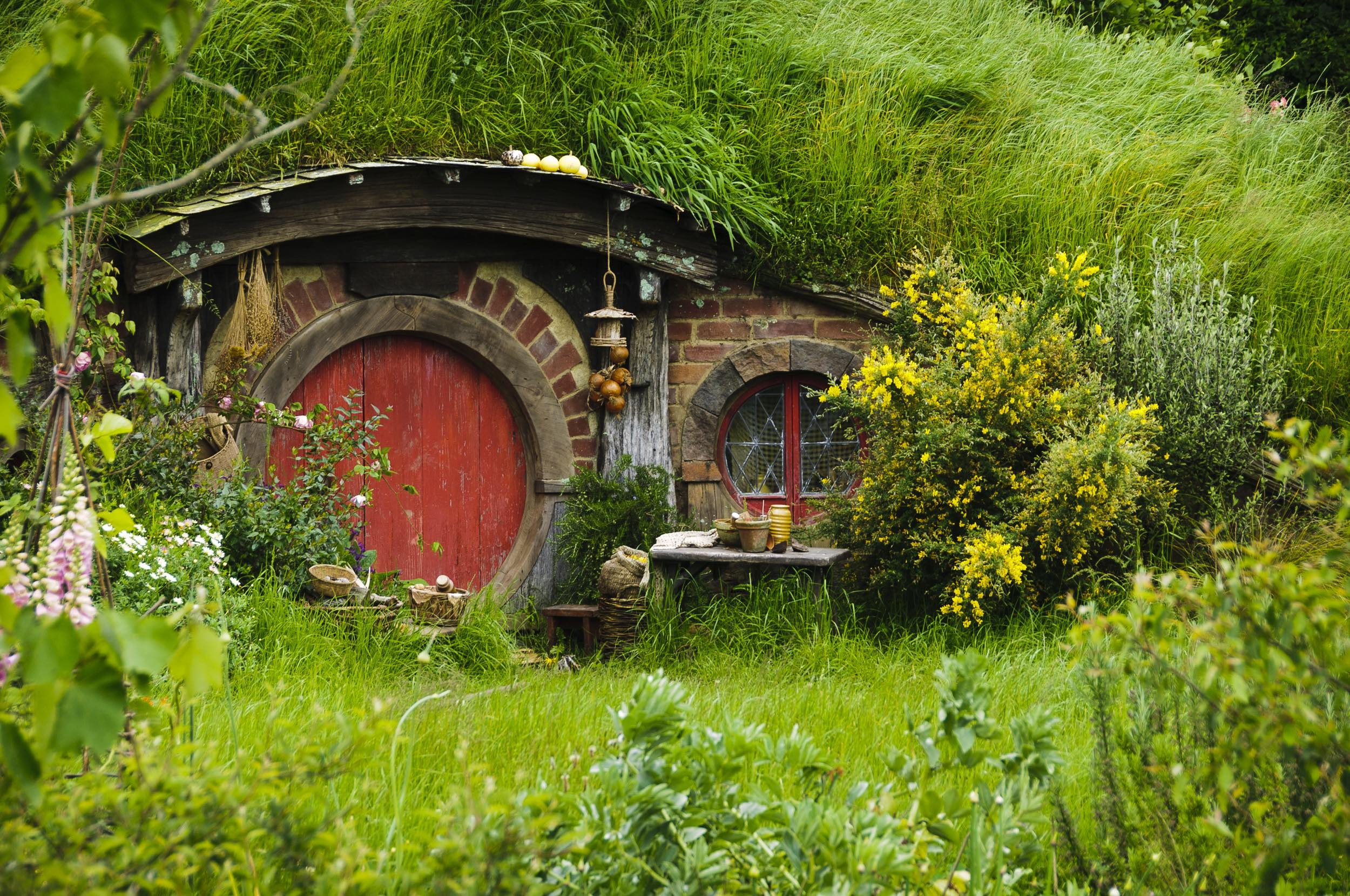 Day Tour from Auckland: Hobbiton Movie Set & Waitomo Caves