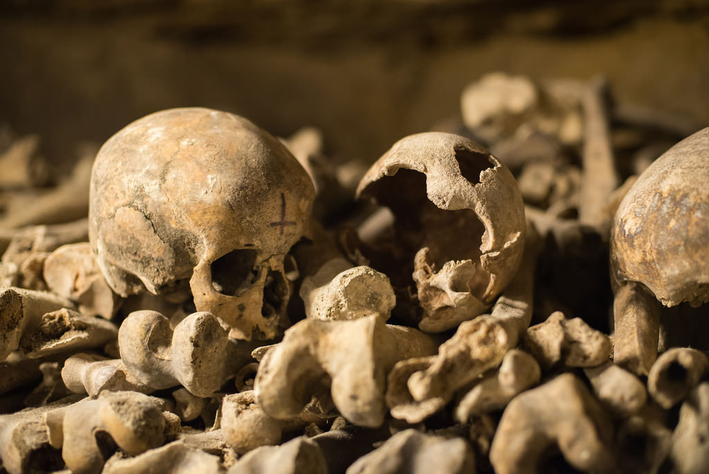 Skip The Line Catacombs Of Paris Small Group Walking Tour