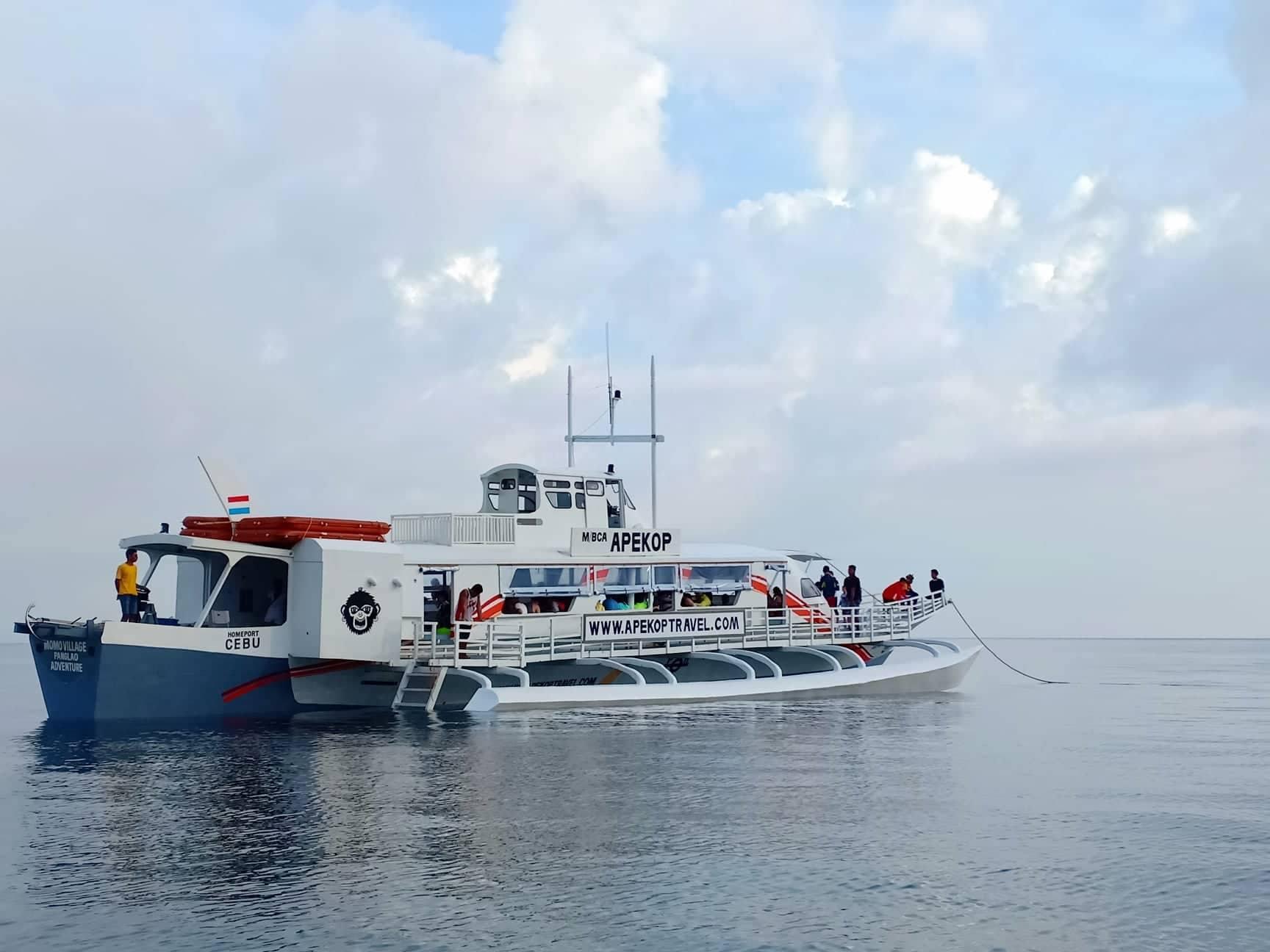Bohol Island to Oslob Shared Transfer