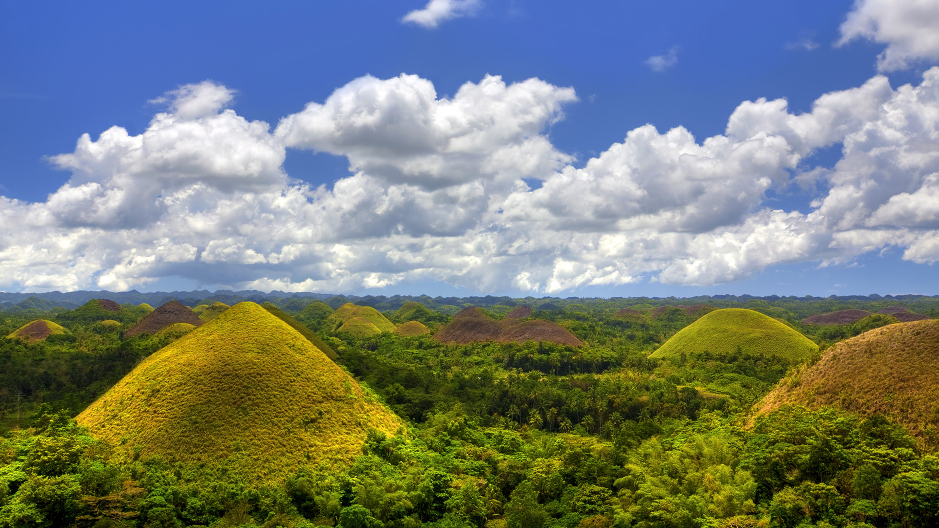 Bohol Island Day Tour: Chocolate Hills and Loboc River Cruise