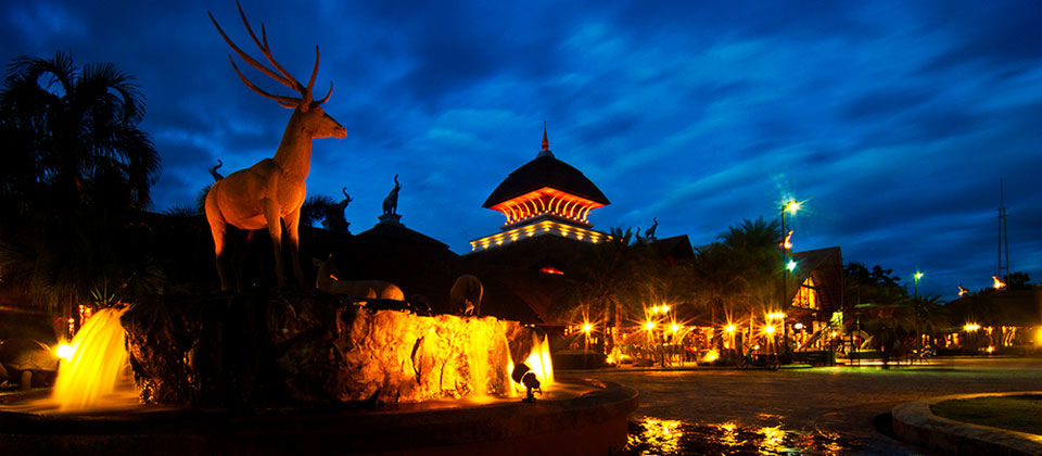 Chiang Mai Night Safari Entrance Pass-KKday.com
