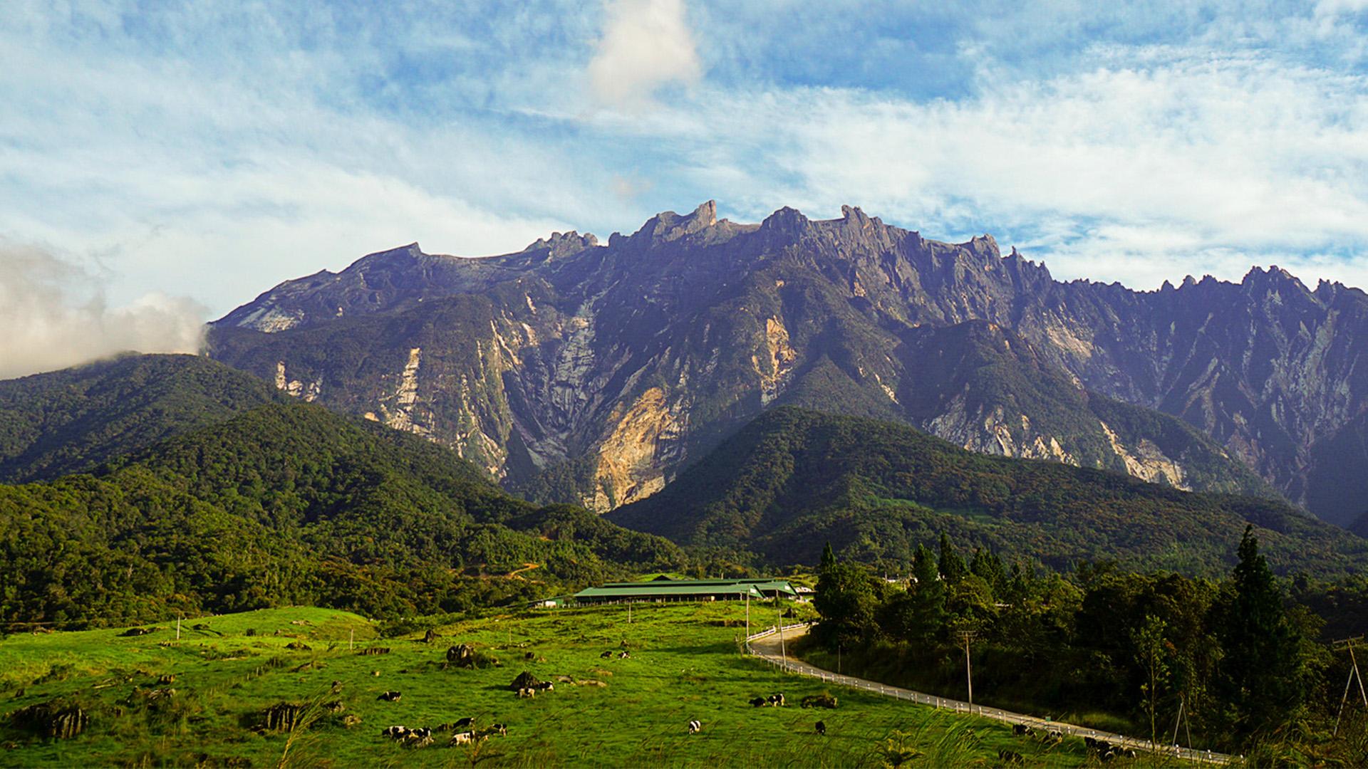 Day Tour From Kota Kinabalu Mt Kinabalu Poring Hot