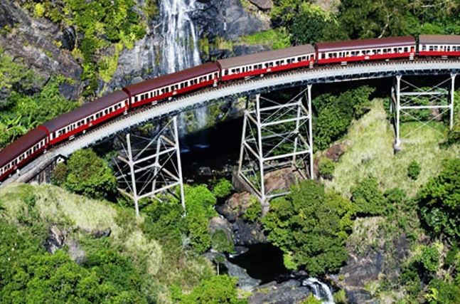 Kuranda Skyrail Rainforest Cableway Day Tour from Cairns