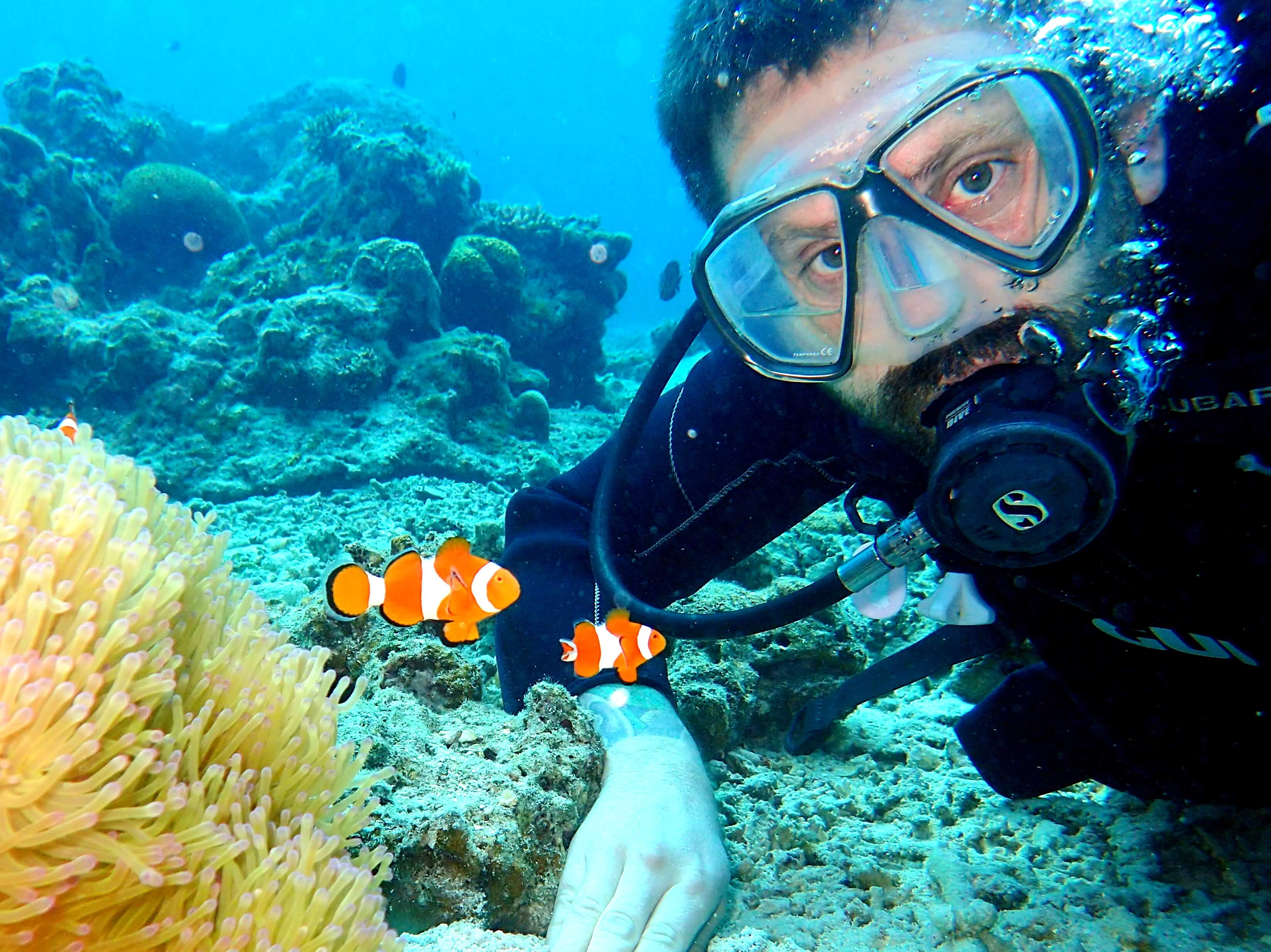 Ishigaki Island Diving and Snorkeling Day Tour in Okinawa