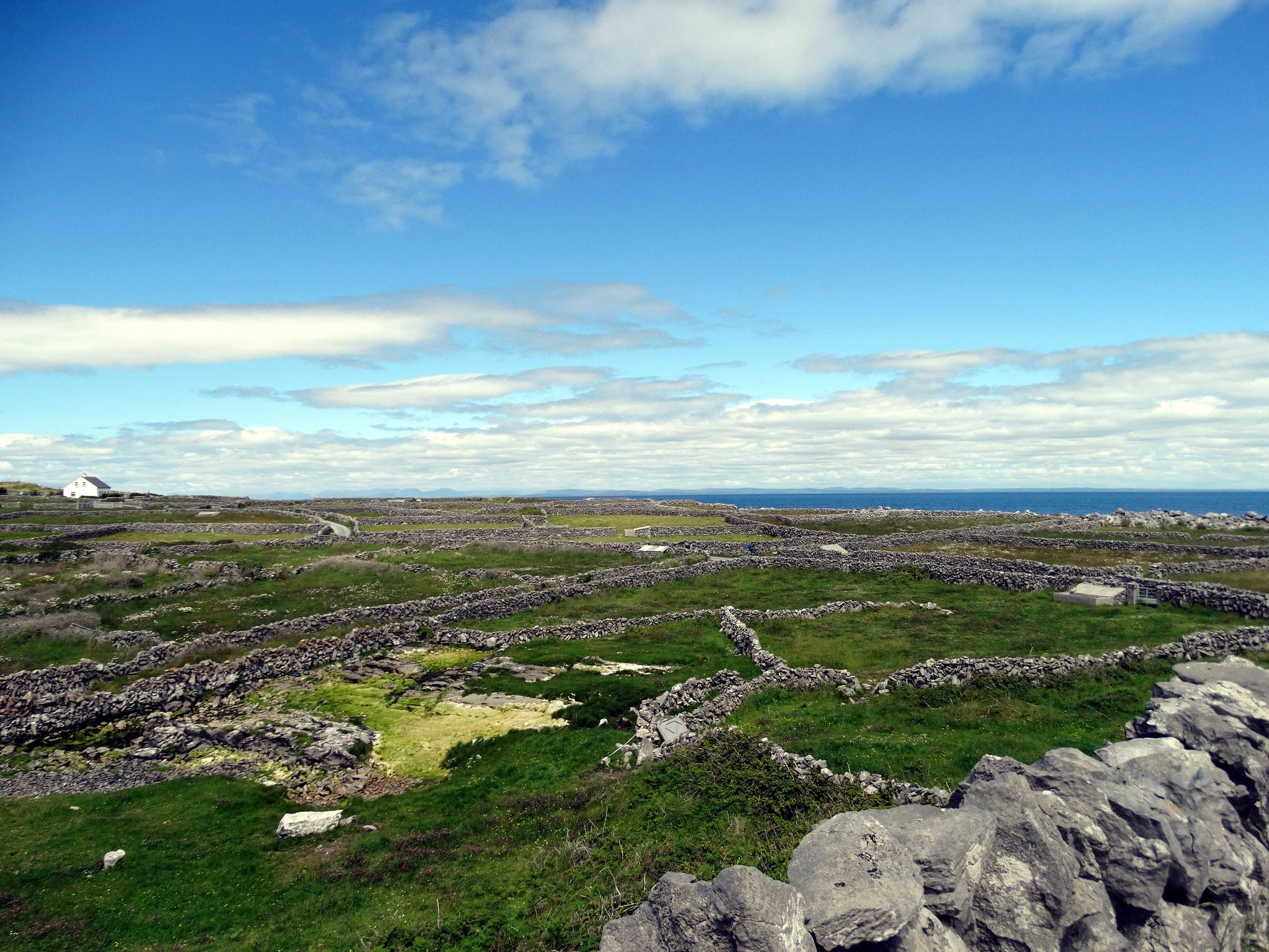 Aran Islands Day Tour from Dublin: Inis Mor and Dun Aonghasa