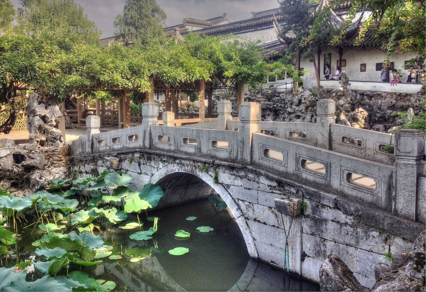 One-day Suzhou Private tour to Lion Grove Garden, Shantang Canal Street, and Tiger Hill. (depart from Shanghai)