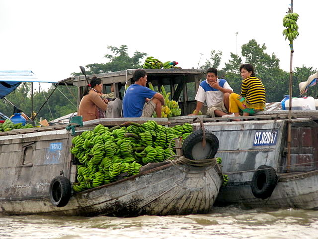Day Tour from Ho Chi-Minh City: Cai Be and Vinh Long Floating Markets