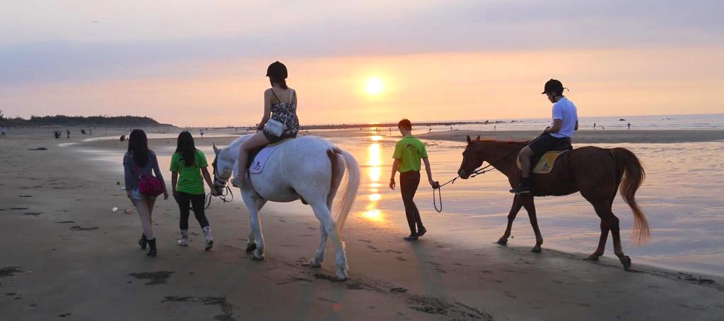 Tamsui Beach Horse Riding Experience
