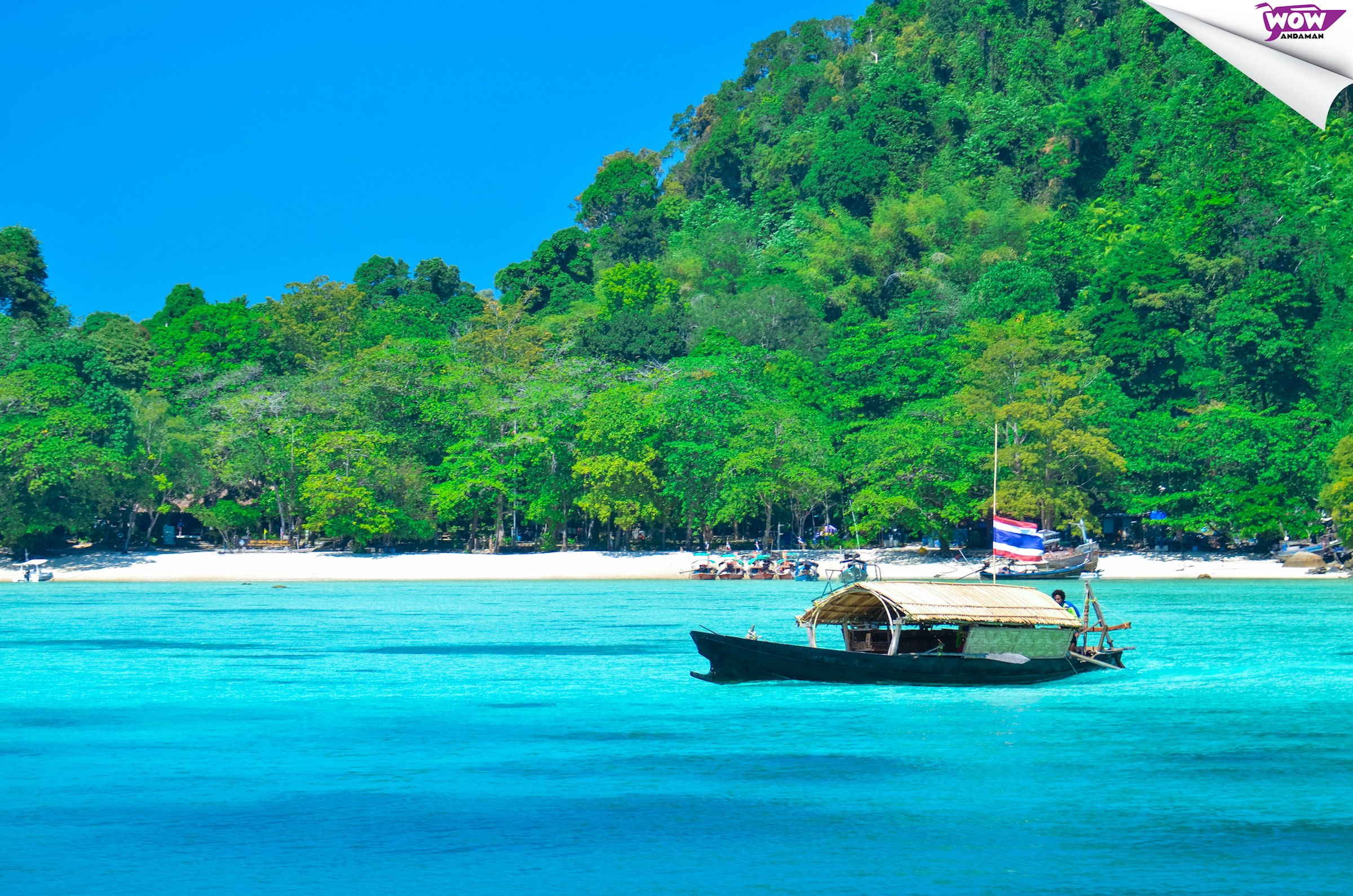 Surin Islands Snorkeling Fun